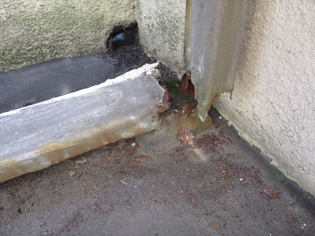 朽ちた階段の足元