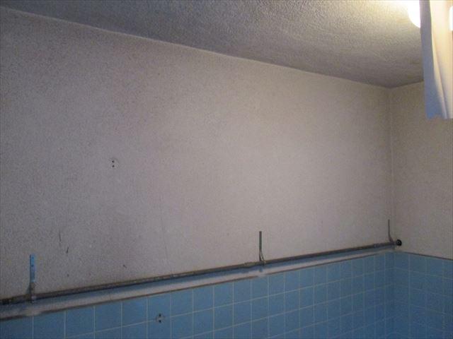 シャワー室の天井・壁
