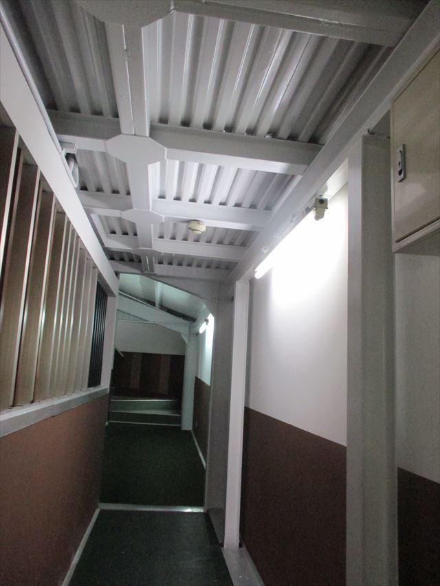 塗装した天井・壁