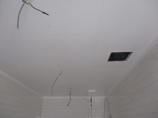 2回目の天井塗装