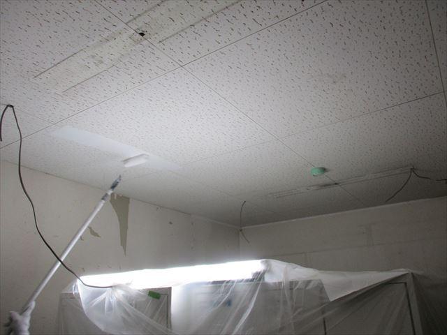 1回目の天井塗装